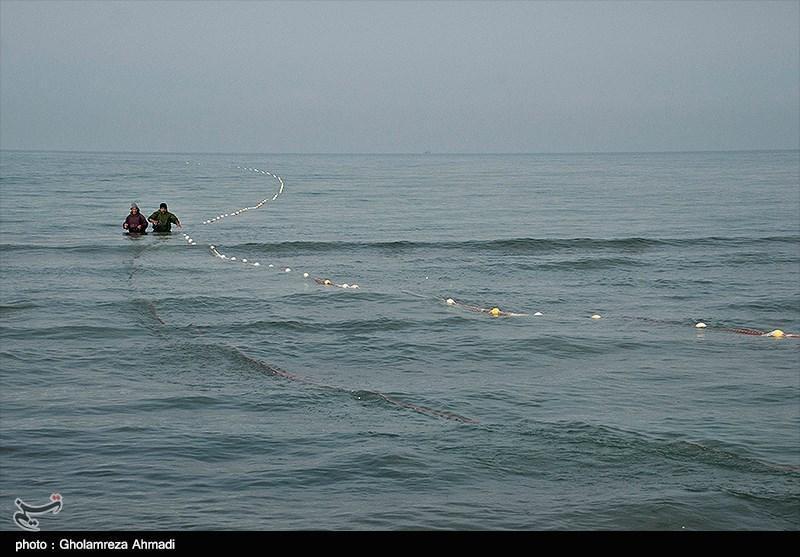 آیا دریای خزر و خلیج فارس اسیدی شده اند؟